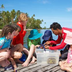 Animal Lovers: Jean-Michel Cousteau Fiji Islands Resort