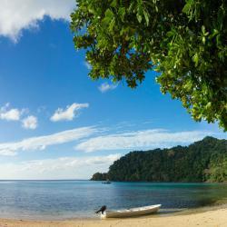 Authentic Properties : Matangi Private Island Resort
